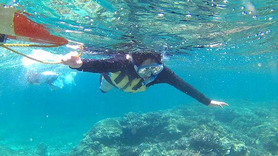サンゴを楽しむM崎さん