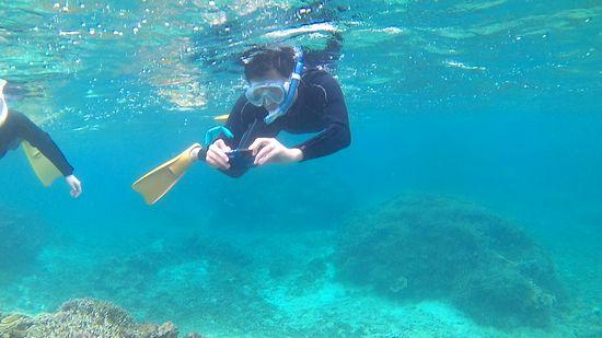 レンタルカメラでマイタケサンゴのご撮影です