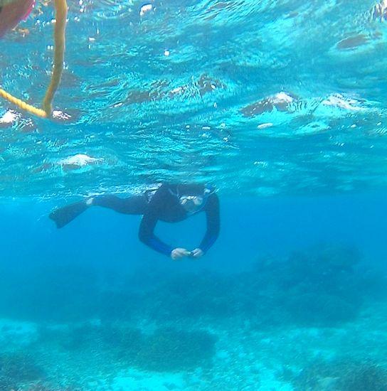 水中カメラで撮影を楽しんでいます