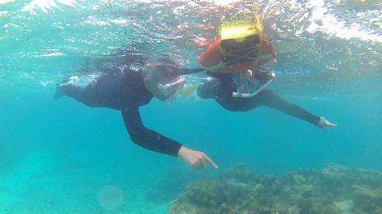 水中世界を楽しんでいらっしゃいます