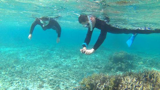 慣れてくれば水中世界を楽しんでいらっしゃいます。