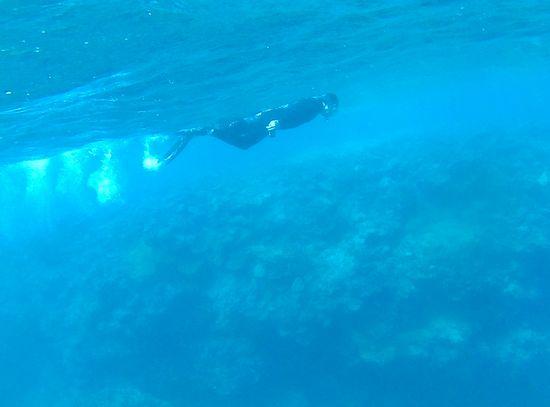 U田さんは怒涛のフィンキックですいすい泳いでいます