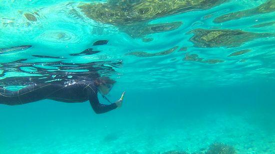 防水ケースに入れた水中カメラで撮影です