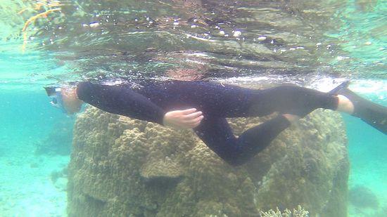 お父さんも水中世界に没頭です。