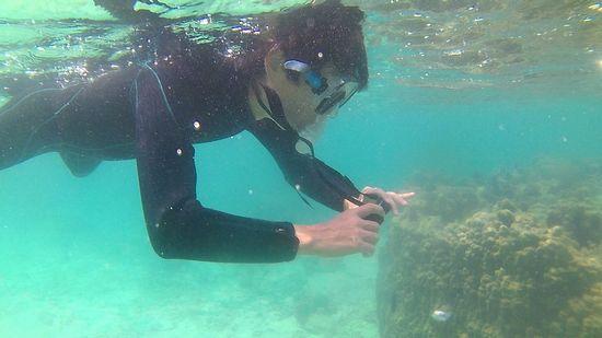 水中カメラに没頭のお父さん