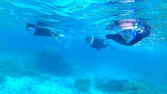 エントリーとともにすいすい泳ぎ始めていきます