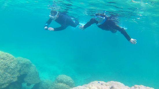 水中世界を思いっきり楽しんでいます。