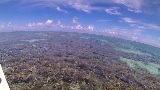 午後からも穏やかな海です