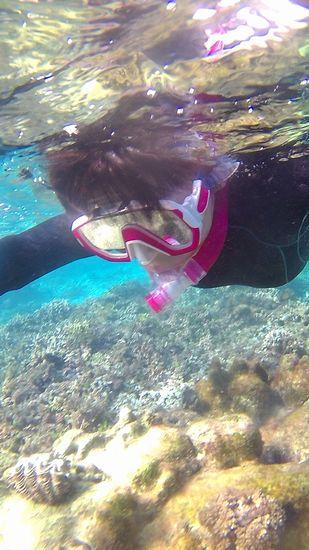 お母さん、顔を付けて泳いでいます