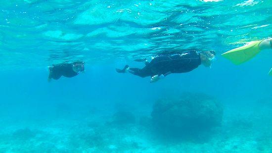 水中世界を楽しんでいるお父さんとお母さんです。