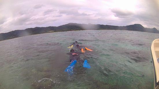 フリータイムでは、のんびりまったり泳ぎまわっています