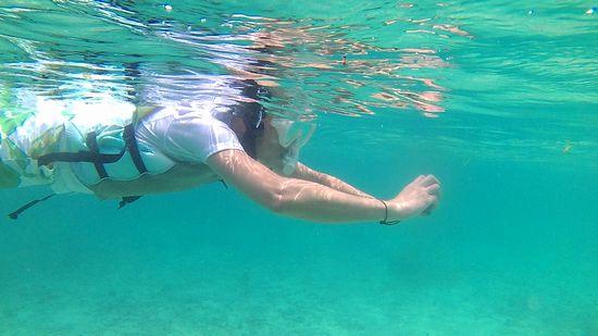 水中カメラで撮影に没頭のH手さん