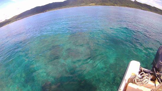穏やかな海です
