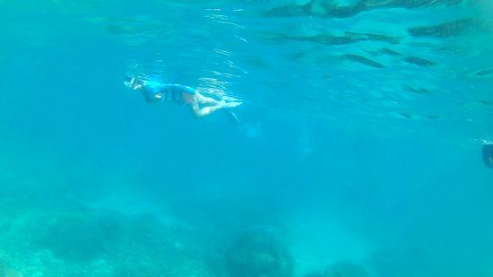 I尾奥さん、すいすい泳ぎ回っています