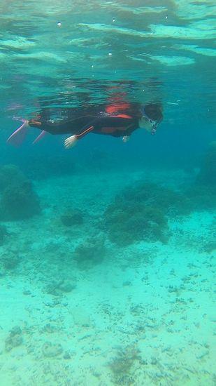 水中世界を満喫!動きを止めてじっくり眺めています