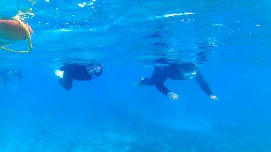 M野さんご夫婦も慣れてくると余裕の泳ぎです