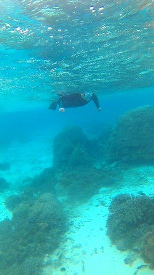 水中の透明度は抜群でしたね!
