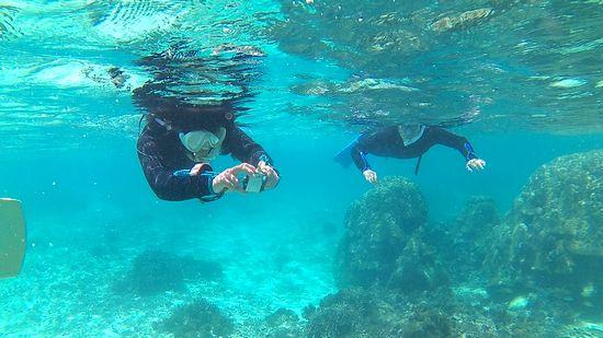 水中カメラで撮影を楽しむN井さんご夫婦です
