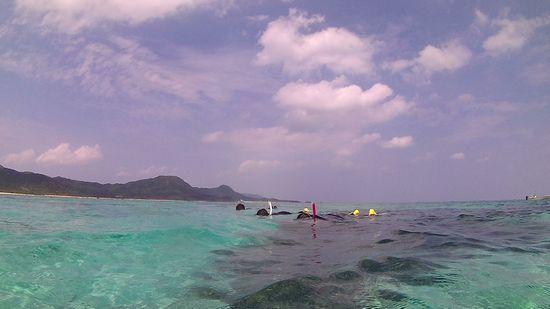 皆さんプカプカ浮いて水中観察。