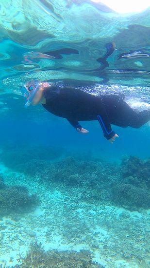 慣れてしまえば、水中世界を楽しんでいます。