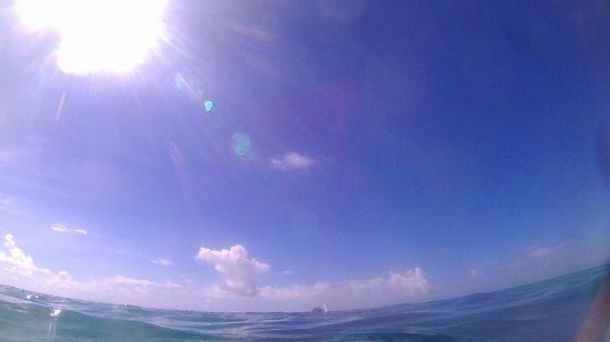 今日もガツンと暑い石垣島です