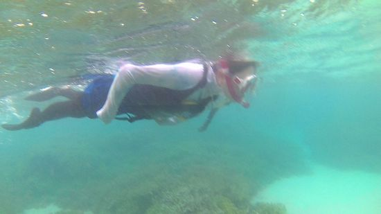 K藤奥さん、終始ゆったり泳いでいます。