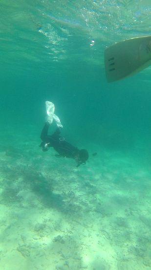 そして水中世界にドボンです