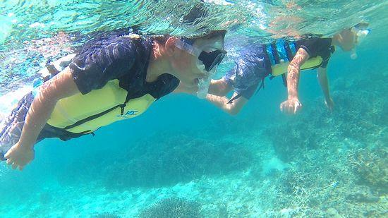 余裕の泳ぎのタイチ君とアオト君です
