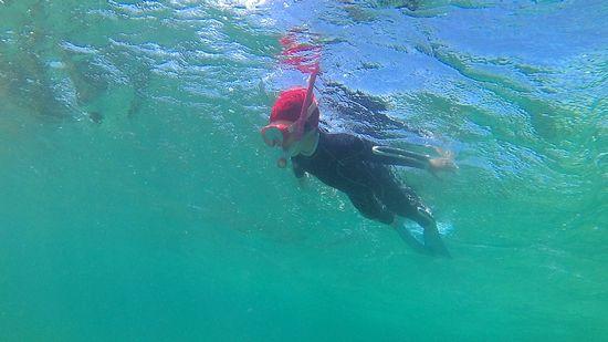 もう一人で泳ぎ回っています