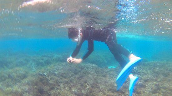 お父さんは、水中カメラ