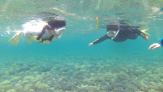 アサカちゃんもワカナちゃんも余裕お泳ぎです。