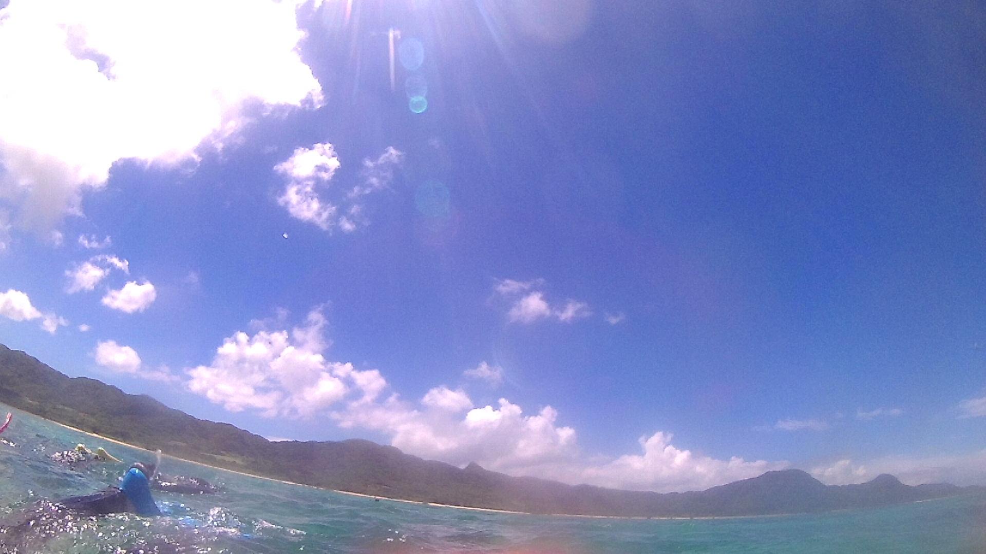 半端なく強い陽射しの石垣島です