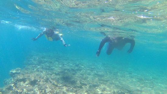 K藤さん、うねりなんてお構いなしの泳ぎです。