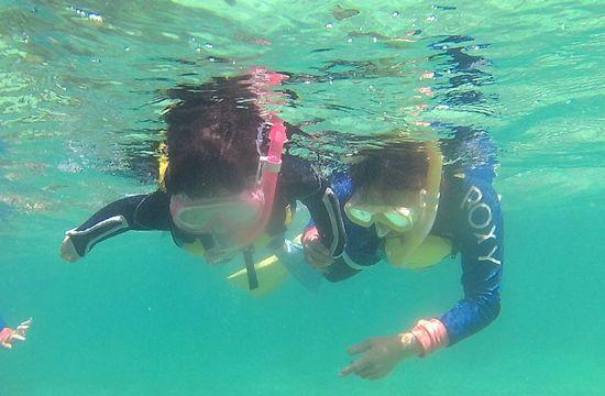 お母さんと一緒に手をつないで泳いでいます。