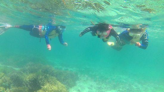 最後は三人そろって、泳ぎでいます。