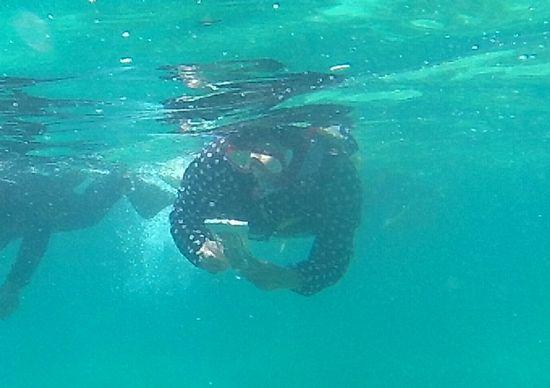 お母さんも水中撮影を楽しんでいます。