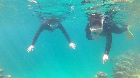 余裕の泳ぎのお二人です
