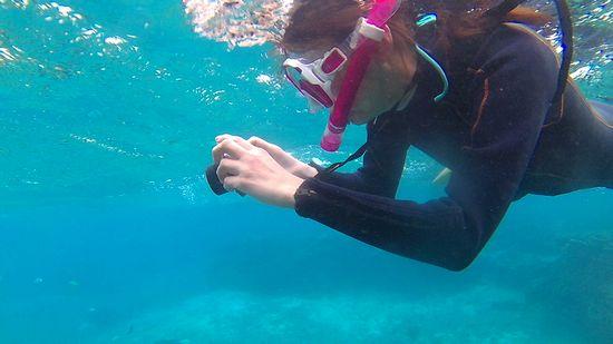 水中カメラで撮影を楽しんだり