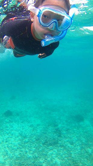 コウイチロウ君、こちらも活発な泳ぎです。