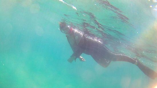 奥さん、素潜りを楽しみながら、泳いでいます。