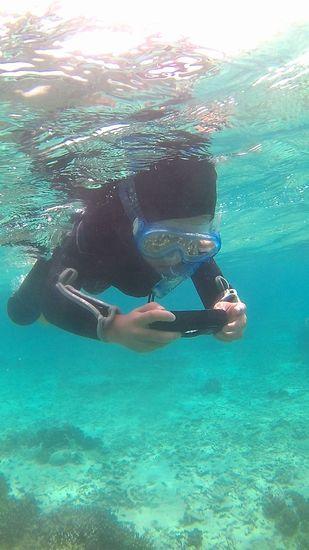 水中カメラで撮影に没頭しています