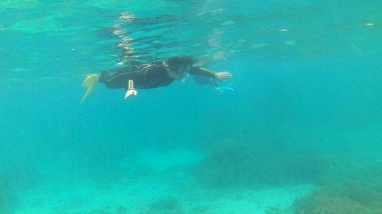 お母さん、教科書通りの泳ぎです