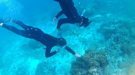 二人そろって、水中です