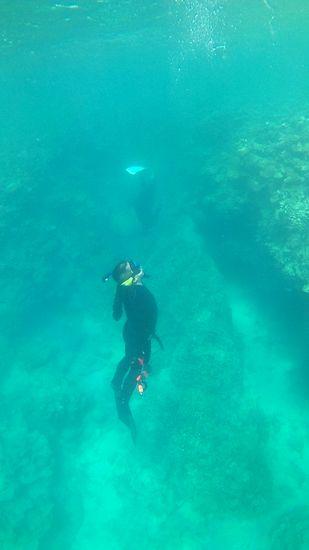 水深15mの深場を楽しんでいます。