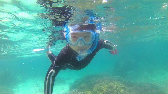 カメラ目線で泳いでいます。