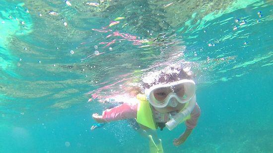リセちゃん、水中を楽しんでいます。