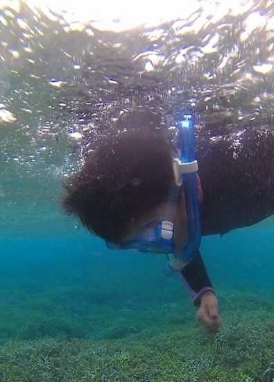 ヤマト君はしっかり泳いでいます