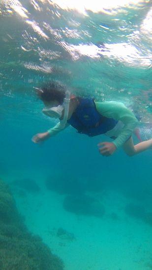 お姉ちゃん、こちらは試行錯誤しながら泳いでいます。v