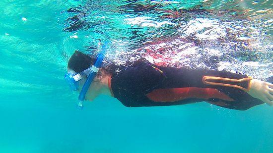 ホノカちゃん、落ち着いた泳ぎです