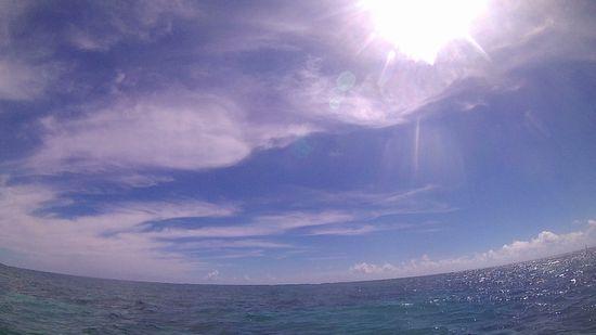 本日も快晴、穏やかな海です